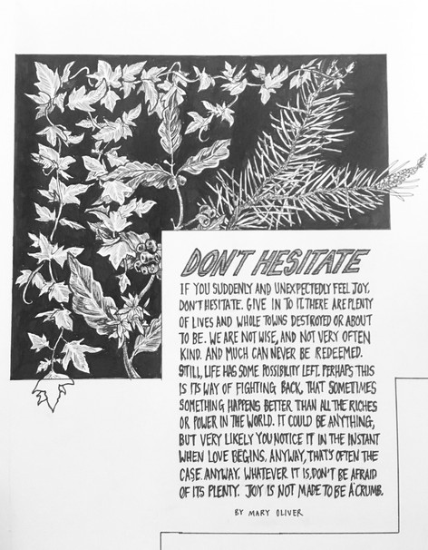 """""""Don't Hesitate"""" by Mary Oliver"""