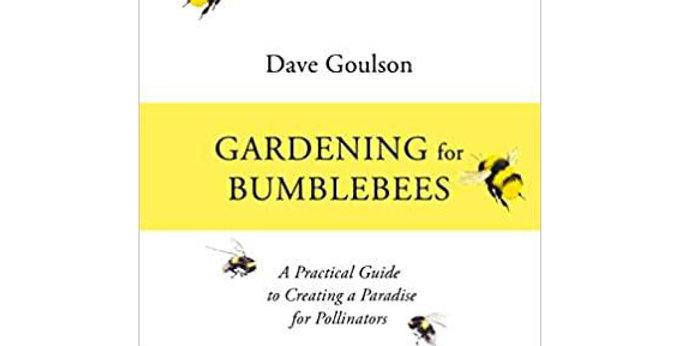 Gardening for Bumblebees: A Practical Guide to Creating a Paradise
