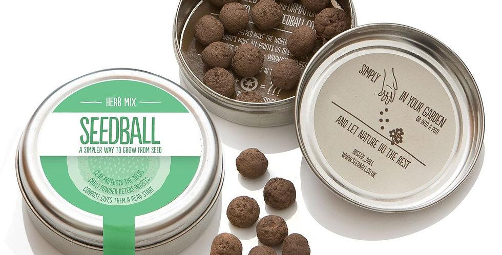 Herb Seed Balls