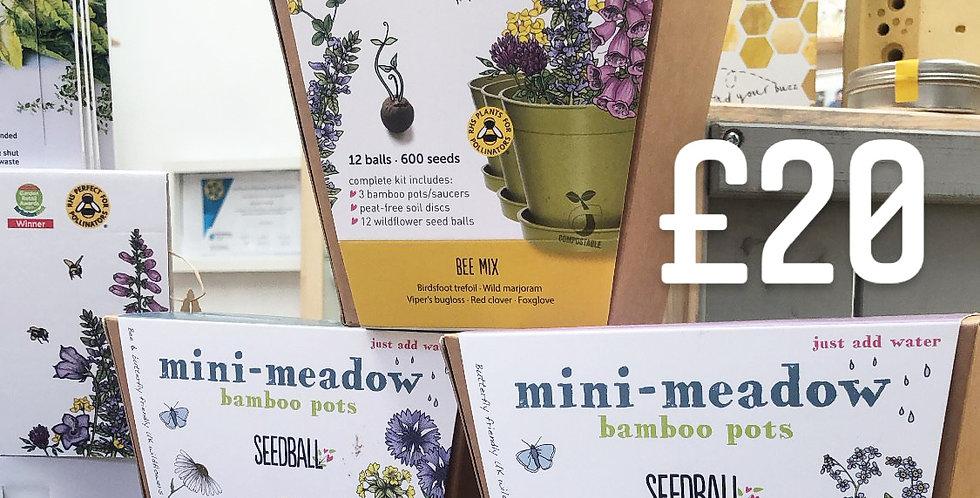 Mini-Meadow Kit