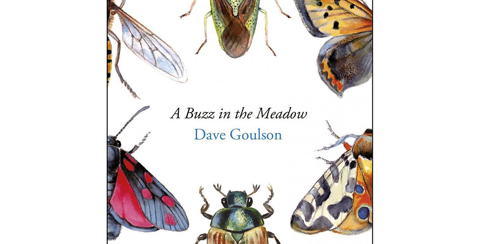 A Buzz in The Meadow - Dave Goulson