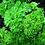 Thumbnail: Herb Seed Balls