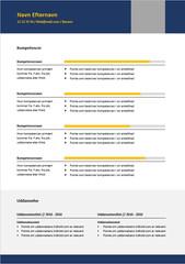 CV ledelse 3.jpg