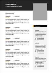 CV ledelse 1.jpg