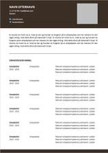 CV Kronologisk 10.jpg