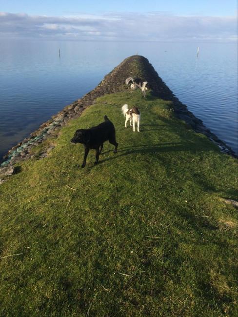 Op de pier bij het IJsselmeer