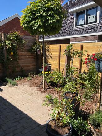 De tuin van het appartement