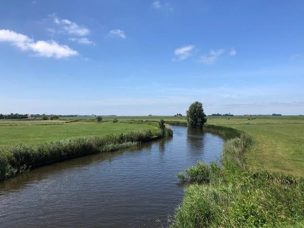 Friesland tenvoeten uit