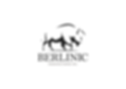 berlinic-logo.png