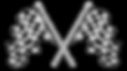 bandiera-a-scacchi-su-entrambi-sfondo-bi