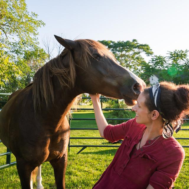 Caretaker and Horse Closeup Photography