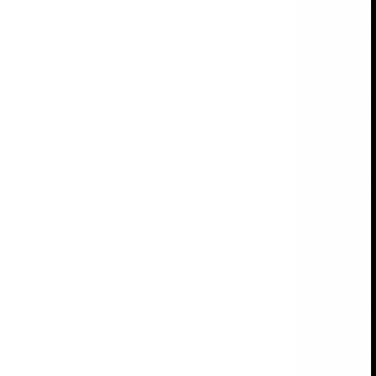 faixa branca esquerda.png