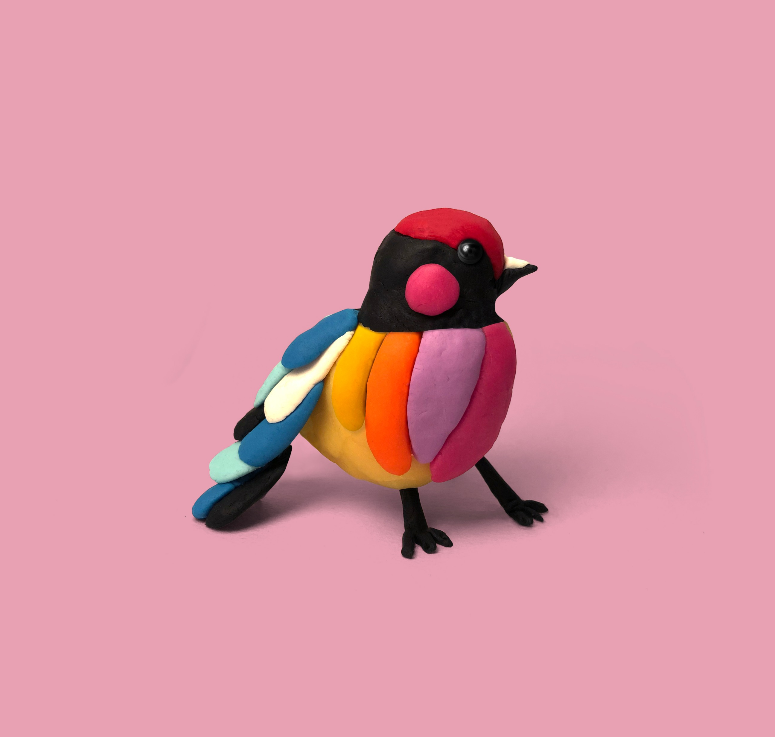 Play Dough Bird