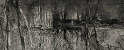 Winnall Moors