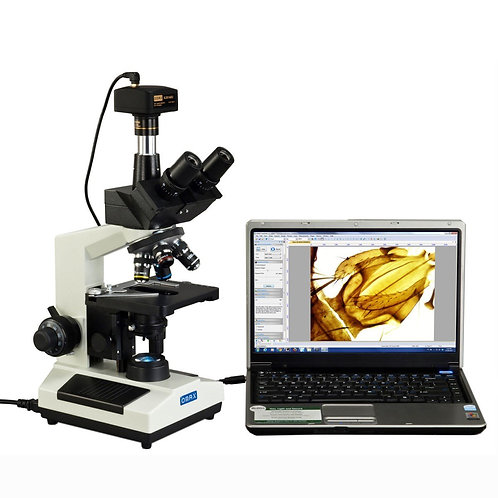 Microscope with Digital Camera