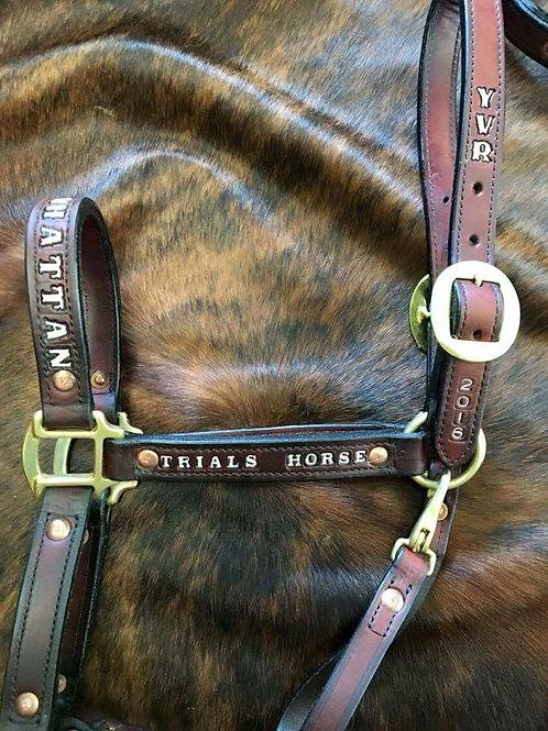 Halter - leather
