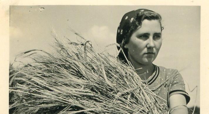 3 1935 Erntebild.jpg