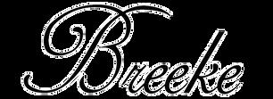 breeke-logo.png