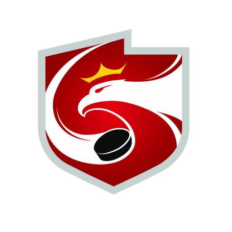 Transmisje meczów Polskiej Hokej Ligi na polskihokej.tv