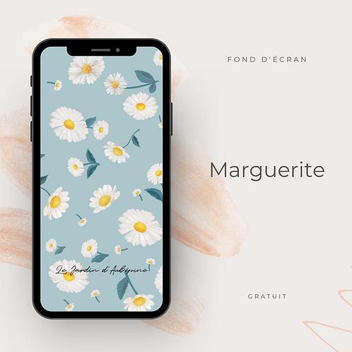 Fond d'écran téléphone - Marguerite