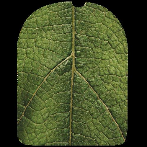 Omnipod POD - Green