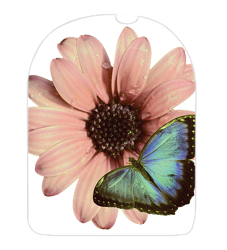 Omnipod POD - Papillon