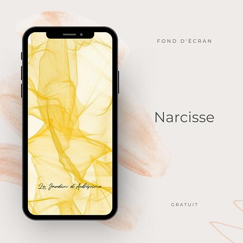 Fond d'écran téléphone - Narcisse