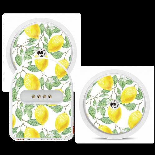 Miaomiao - Citrus