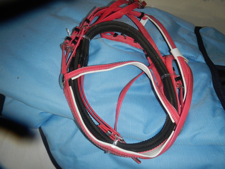 bridles all sizes . with grip reins noseband all adjustable $40