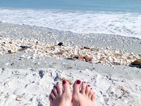 Sand, Sea, Seashells... Sanibel !!!