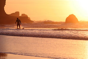 Sunset Surfing at Piha Beach
