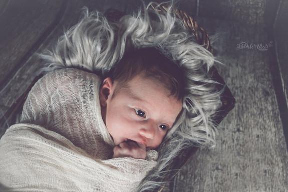 newborn photo 3.jpg