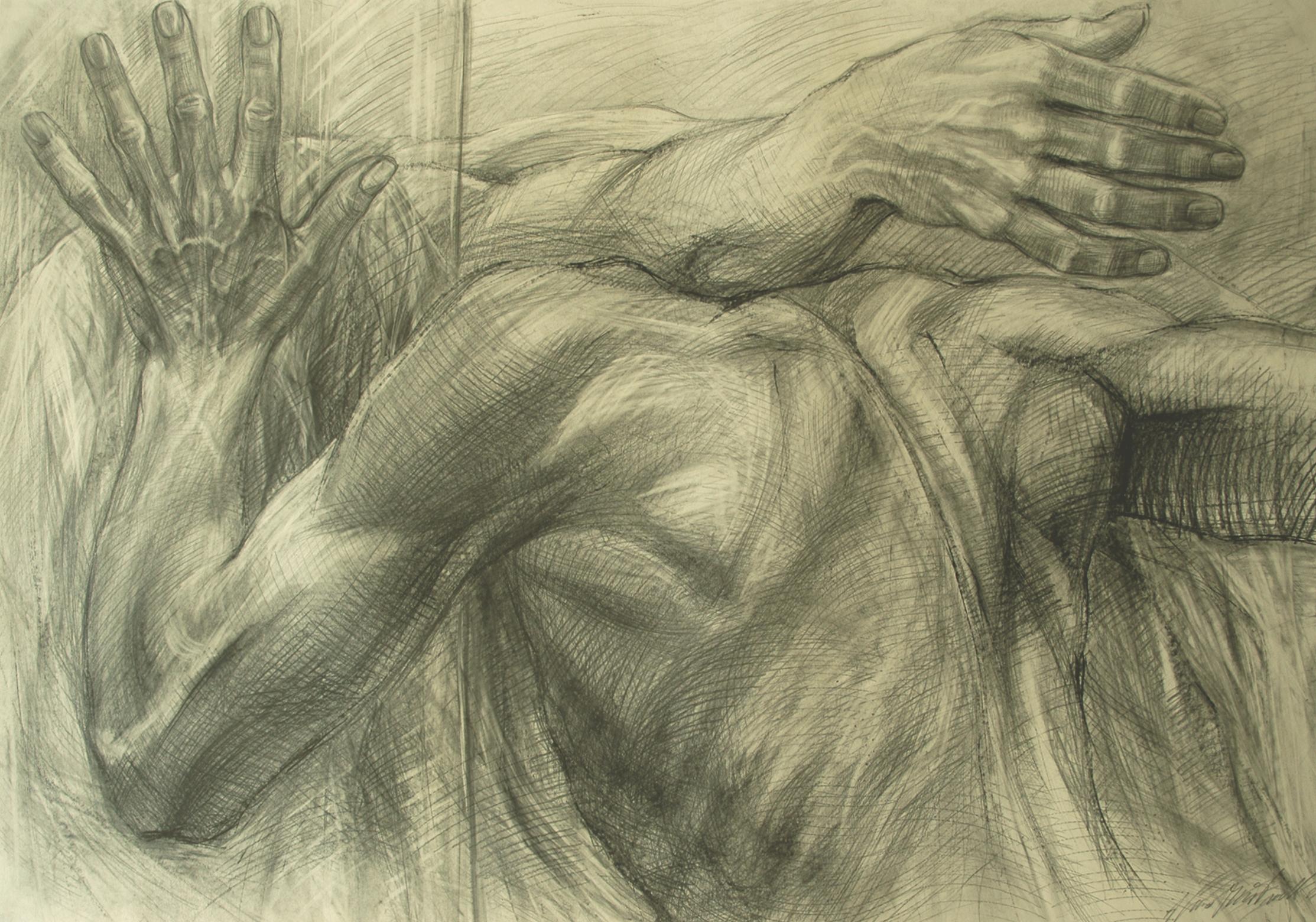 29 Deposizione, 2005 matita su carta, 10