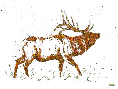 Elk Print-8.5 x 11 inches