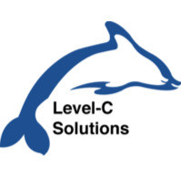 Level-C Solutions