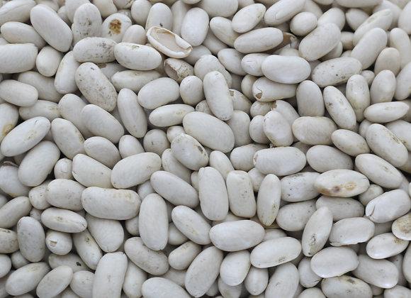 Haricots Rognon Blanc