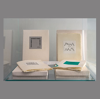 Libri d'artista 2.jpg