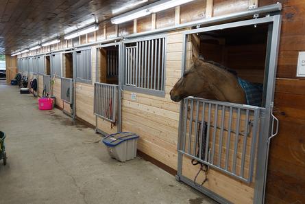 Inside of First Barn