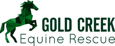 GC Rescue logo.png