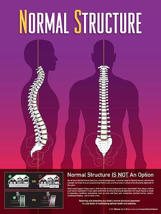 Chiropractor Columbus Georgia Chiropractic Premier Back Pain