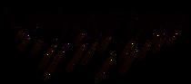 LF Logo v2.png