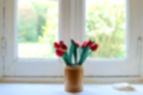 TULIPS WINDOW colin-maynard-138246.jpg