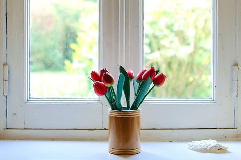 TULIPS WINDOW colin-maynard-138246.jpg