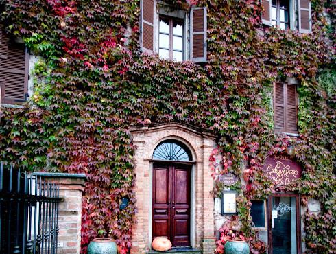 Stupenda casa con edera