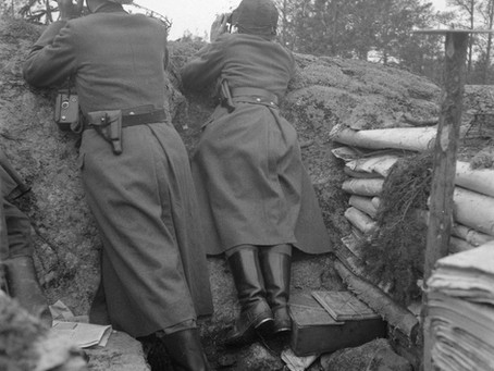 Hanko in WW2 - The 2020 battlefield archaeology excavations day 1/10