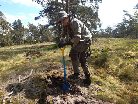 Mapping the WW2 conflict archaeology of Örö
