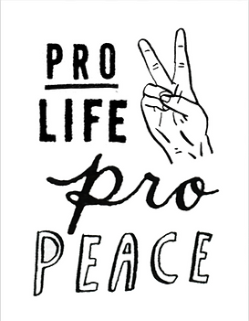 PRO LIFE.png