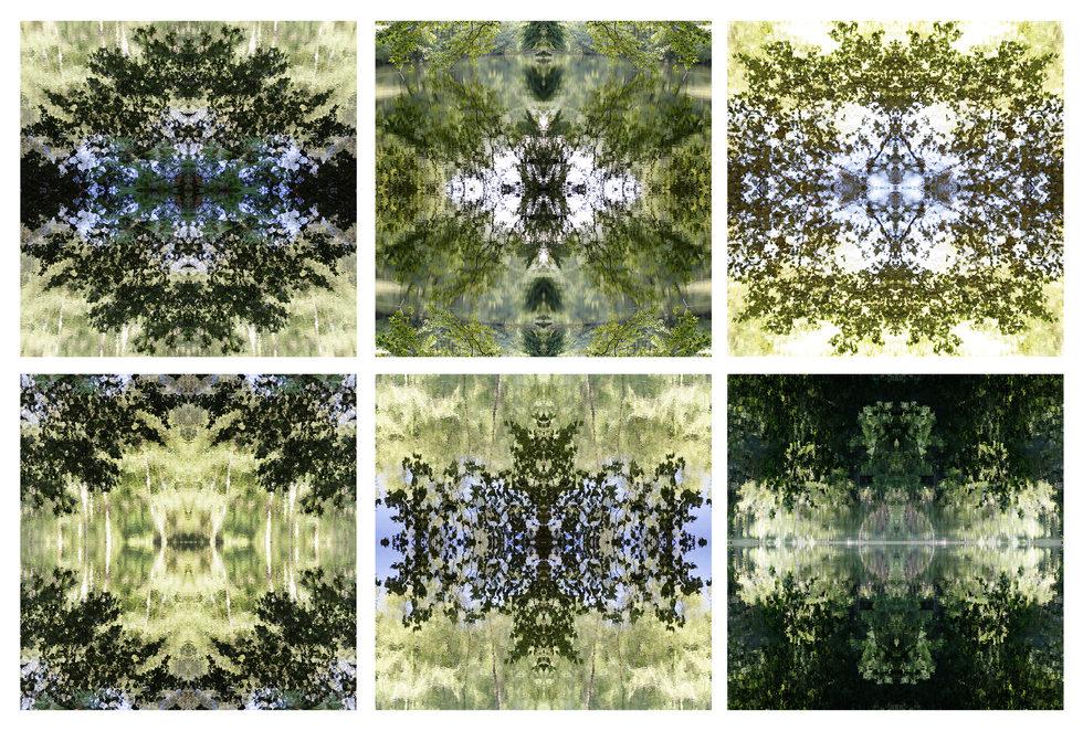 Estos reflejos intentan atrapar instantes efímeros de la naturaleza. La fotografía se ha convertido en un instrumento para encontrar equilibrio y armonía en el diseño. Algunas de estas creaciones han sido utilizadas para crear alfombras para las firmas Stephanie Odegard y Arzu Studio Hope y son el diseño principal de los productos de la marca Adarbakar.