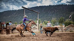 The King S Arena Horse Boarding In Great Falls Mt