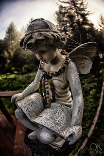 Travel photography destination California: humboldt angel in the woods